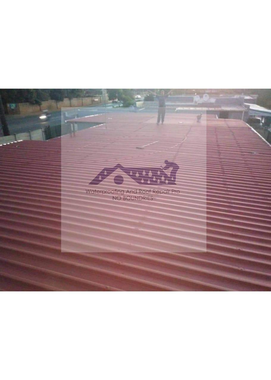 Roof Coating10
