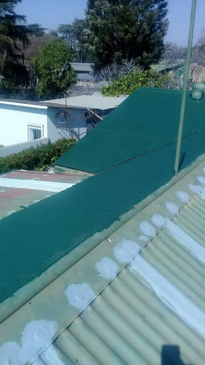 Roof Coating11