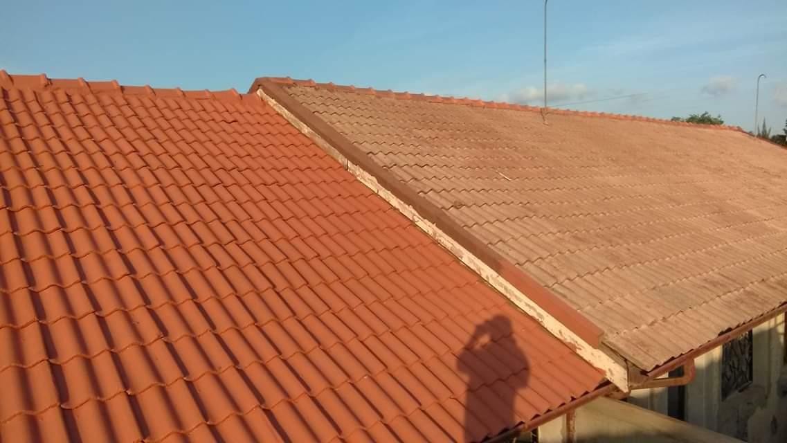 Roof Coating4