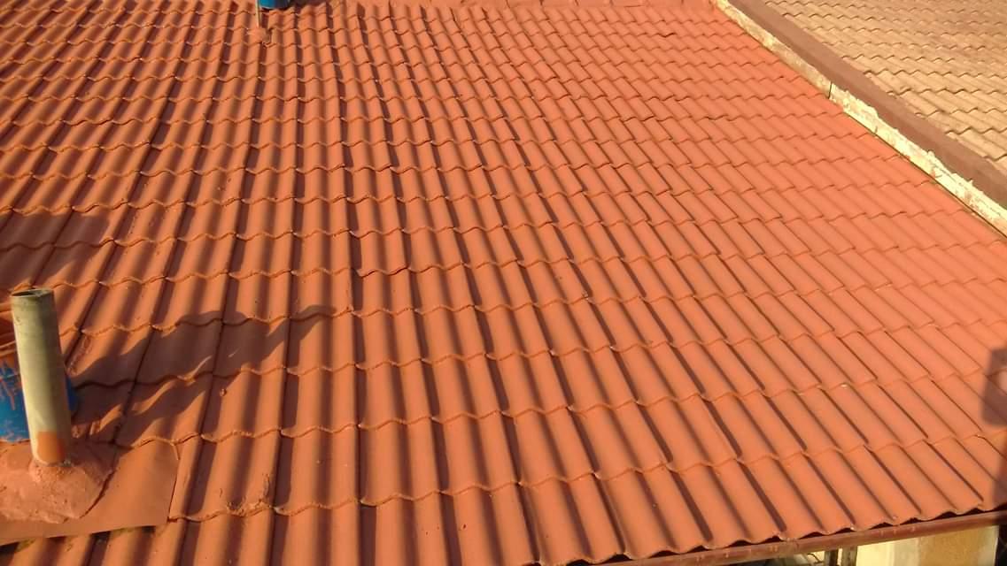 Roof Coating5