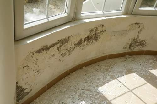 damp proofing13